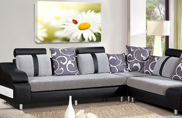 Floral Flower White Daisys Canvas Wall Art Picture Print